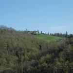 7 casa dal basso e bosco