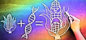 Contro gli OGM